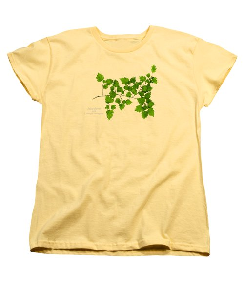 Hawthorn Women's T-Shirt (Standard Cut) by Christina Rollo