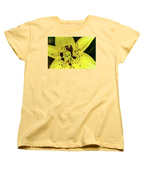 Asiatic Lily Women's T-Shirt (Standard Cut) by Jay Stockhaus