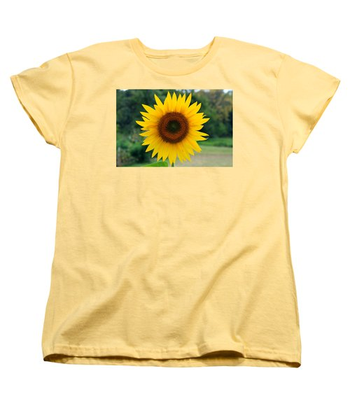 August Sunflower Women's T-Shirt (Standard Cut) by Jeff Severson