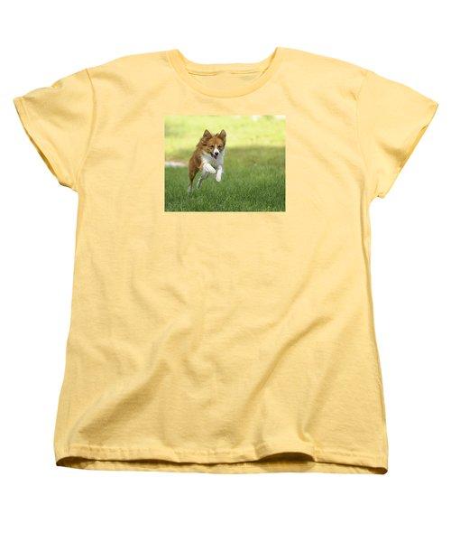 Aussi At Play Women's T-Shirt (Standard Cut)