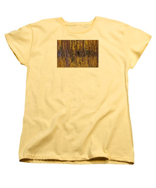 Autumn Colors Women's T-Shirt (Standard Cut)