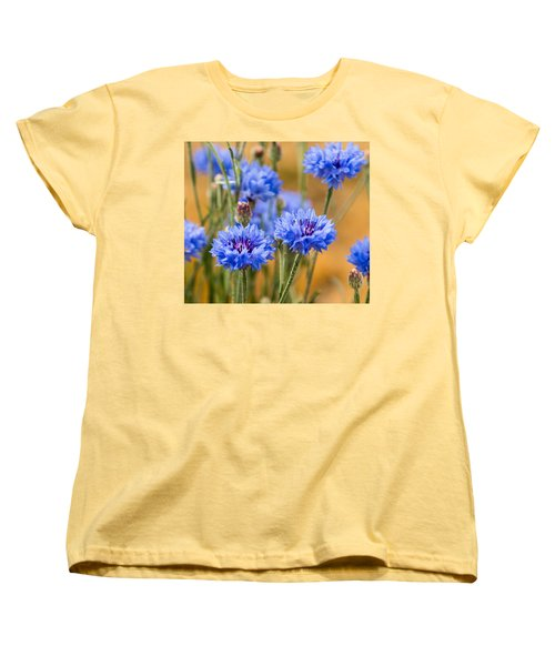 Bachelor Buttons In Blue Women's T-Shirt (Standard Cut) by E Faithe Lester