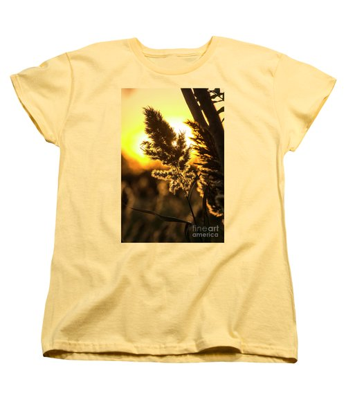 Women's T-Shirt (Standard Cut) featuring the photograph Backlit By The Sunset by Zawhaus Photography