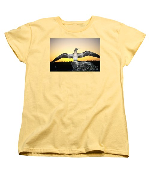 Booby At Sunset Women's T-Shirt (Standard Cut) by Dave Fleetham - Printscapes