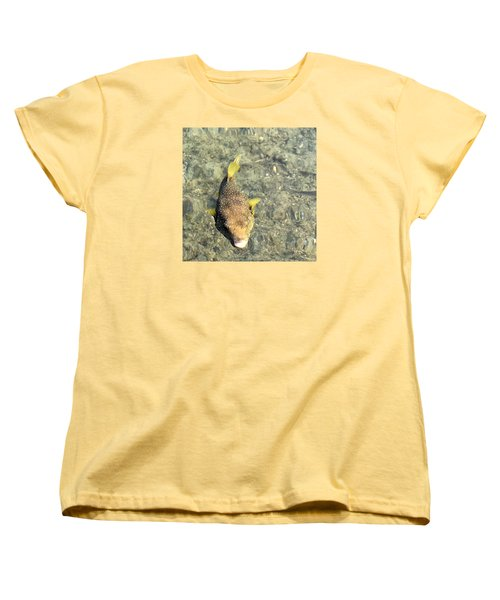 Box Fish - 1 Women's T-Shirt (Standard Cut) by Karen Nicholson