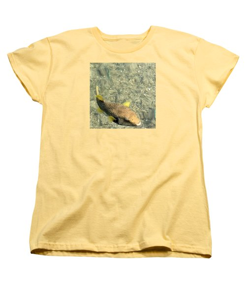 Box Fish - 3 Women's T-Shirt (Standard Cut) by Karen Nicholson