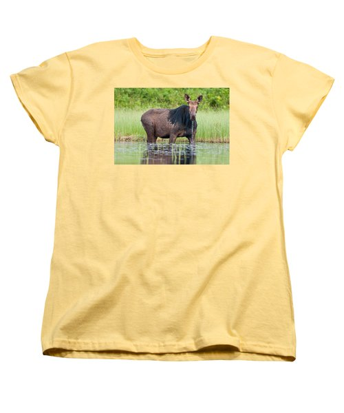 Breakfast At Mooshead Women's T-Shirt (Standard Cut) by Brent L Ander