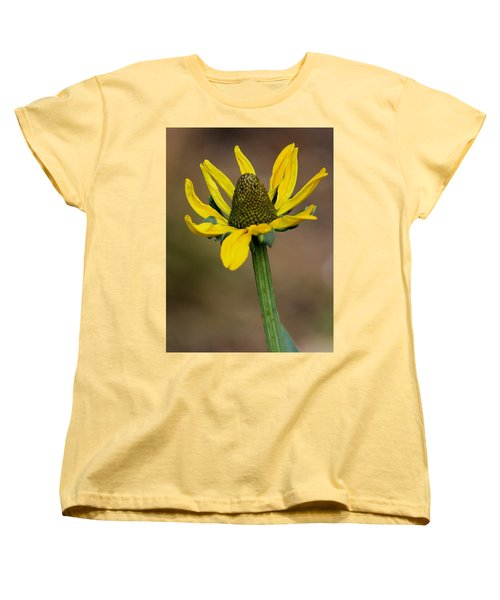 Women's T-Shirt (Standard Cut) featuring the photograph Bright And Shining by Deborah  Crew-Johnson