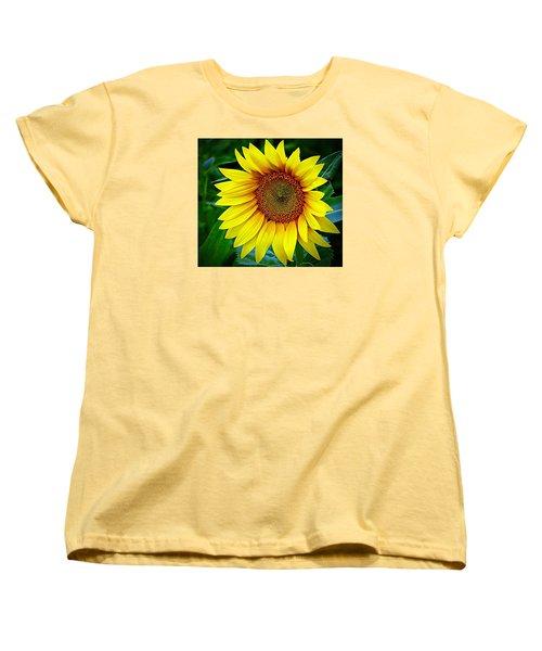 Brighten Your Day Women's T-Shirt (Standard Cut) by Karen McKenzie McAdoo