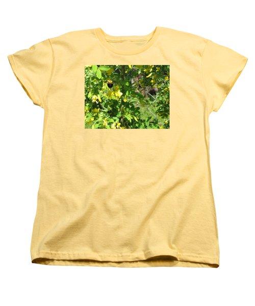 Bumblebee In Flight In Yellow Flowers Women's T-Shirt (Standard Cut) by Barbara Yearty