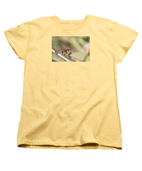 Bush Cricket Women's T-Shirt (Standard Cut) by Jivko Nakev