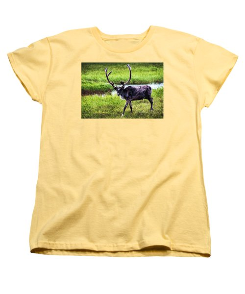 Women's T-Shirt (Standard Cut) featuring the photograph Caribou by Anthony Jones