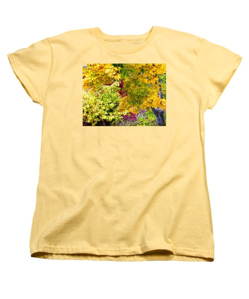 Country Color 15 Women's T-Shirt (Standard Cut) by Will Borden