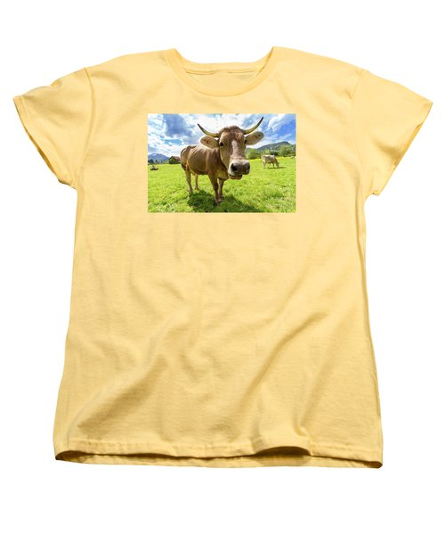 Women's T-Shirt (Standard Cut) featuring the photograph Cow In Meadow by MGL Meiklejohn Graphics Licensing