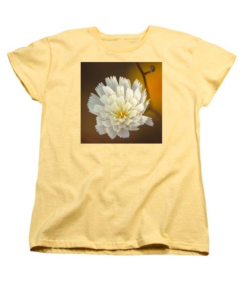 Death Valley Superbloom 203 Women's T-Shirt (Standard Cut) by Daniel Woodrum