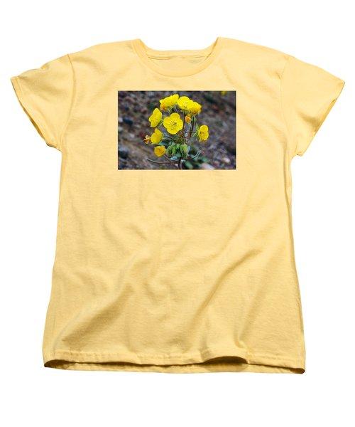 Death Valley Superbloom 306 Women's T-Shirt (Standard Cut) by Daniel Woodrum