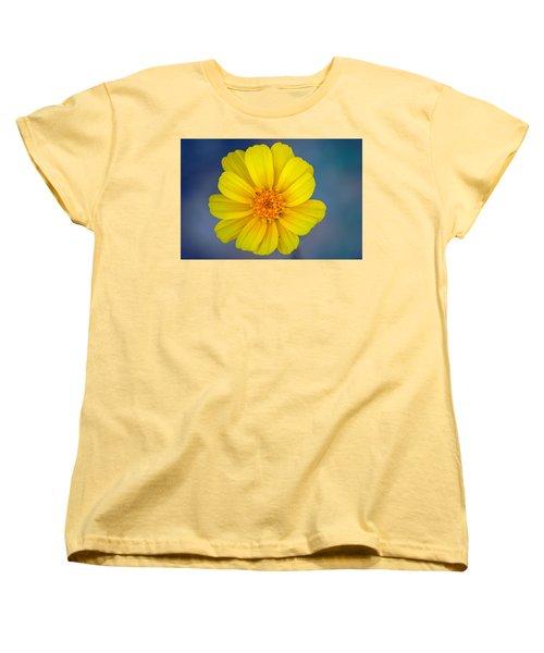 Death Valley Superbloom 403 Women's T-Shirt (Standard Cut) by Daniel Woodrum