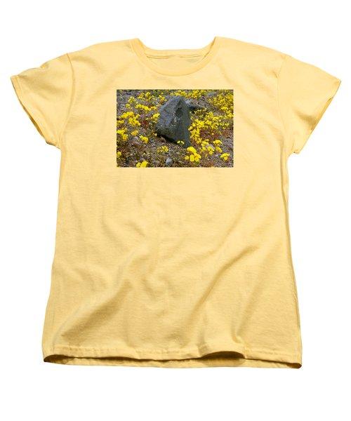 Death Valley Superbloom 406 Women's T-Shirt (Standard Cut) by Daniel Woodrum