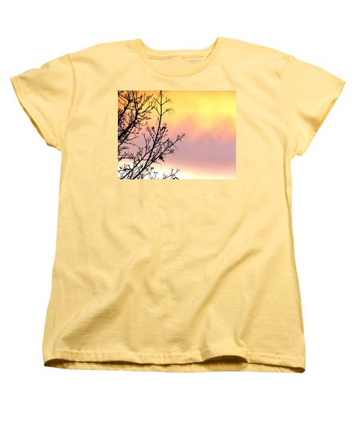 Women's T-Shirt (Standard Cut) featuring the photograph Early Spring Sunset by Will Borden