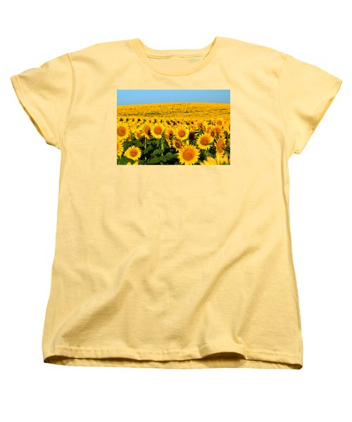 Endless Sunflowers Women's T-Shirt (Standard Cut)