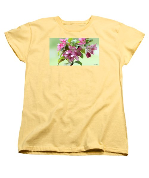For The Beauty Of The Earth Women's T-Shirt (Standard Cut) by Skip Tribby