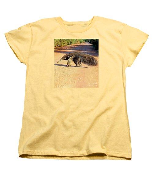 Giant Anteater Crosses The Transpantaneira Highway In Brazil Women's T-Shirt (Standard Cut) by Nareeta Martin