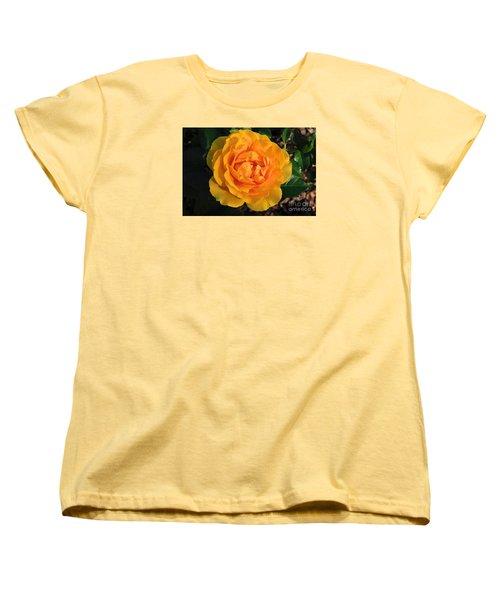Golden Memories Women's T-Shirt (Standard Cut) by Sandy Molinaro
