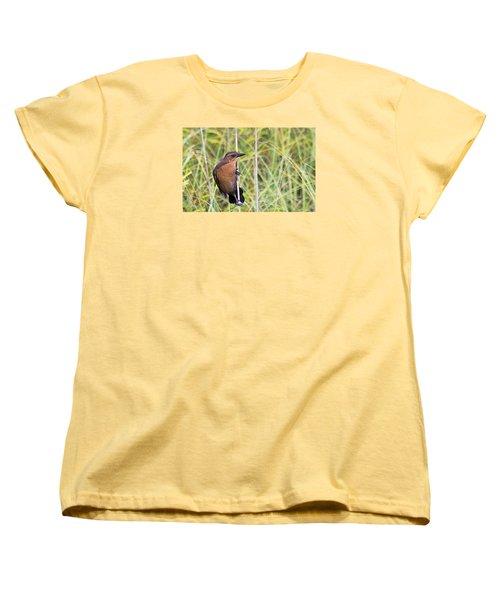 Grackle In The Reeds Women's T-Shirt (Standard Cut) by Kenneth Albin