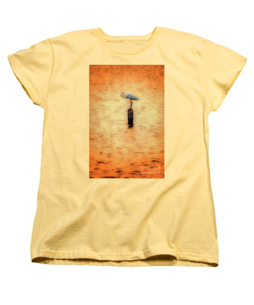 Great White Heron On Currituck Sound Outer Banks Women's T-Shirt (Standard Cut) by Dan Carmichael