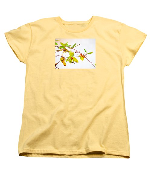 Green Twigs And Leaves Women's T-Shirt (Standard Cut) by Craig Walters