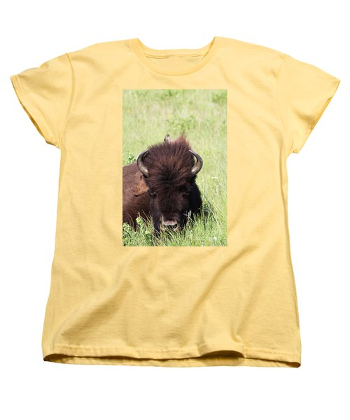 Hey There Is A Bird On Your Head Women's T-Shirt (Standard Cut) by Alyce Taylor