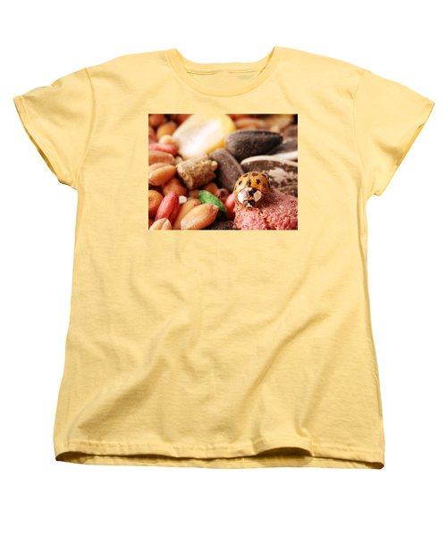 Lucky Ladybug At The Park Women's T-Shirt (Standard Cut) by Belinda Lee