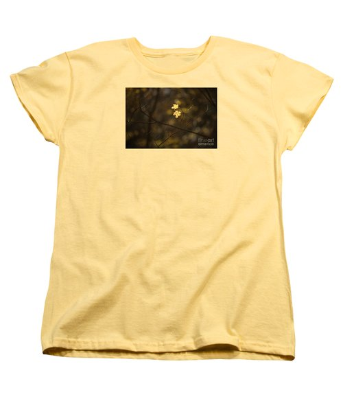 Late Autumn Light Women's T-Shirt (Standard Cut) by Diane Diederich