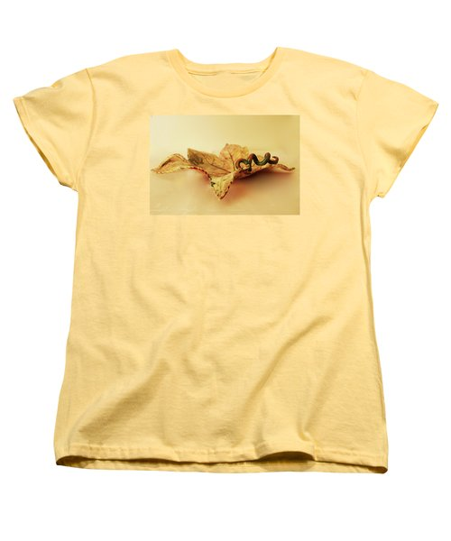 Leaf Plate 1 Women's T-Shirt (Standard Cut) by Itzhak Richter