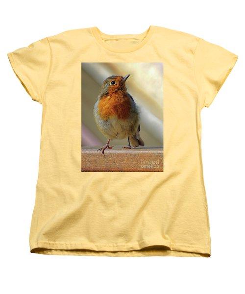 Little Robin Redbreast Women's T-Shirt (Standard Cut) by Lynn Bolt