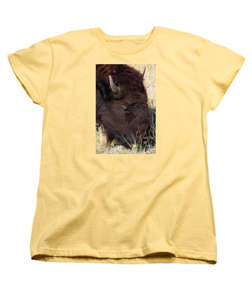 Lonely Bison Women's T-Shirt (Standard Cut) by Janie Johnson