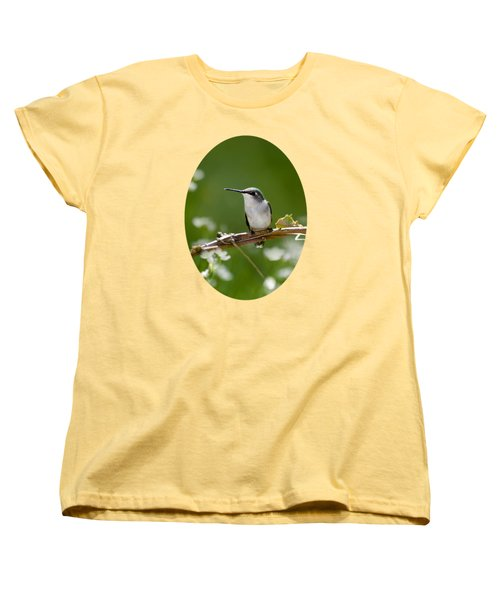 Meadow Hummingbird Women's T-Shirt (Standard Cut) by Christina Rollo
