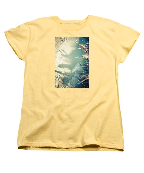 Natural Fantasmigoria Women's T-Shirt (Standard Cut) by Michele Cornelius