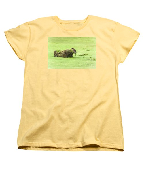 Women's T-Shirt (Standard Cut) featuring the photograph Nutria In A Pesto Sauce by Robert Frederick