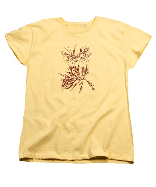 Women's T-Shirt (Standard Cut) featuring the mixed media Ocean Seaweed Plant Art Laurencia Tenuissima by Christina Rollo