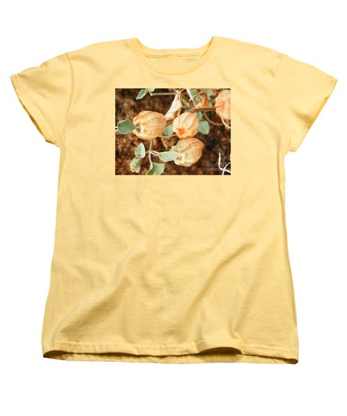 Oh What We See Women's T-Shirt (Standard Cut)