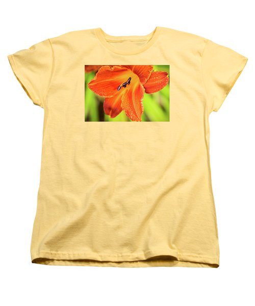 Orange Lilly Of The Morning Women's T-Shirt (Standard Cut) by Ken Stanback
