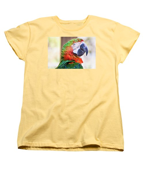 Parrot Women's T-Shirt (Standard Cut) by Stephanie Hayes