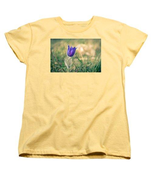 Pasque Flower Women's T-Shirt (Standard Cut) by Andreas Levi