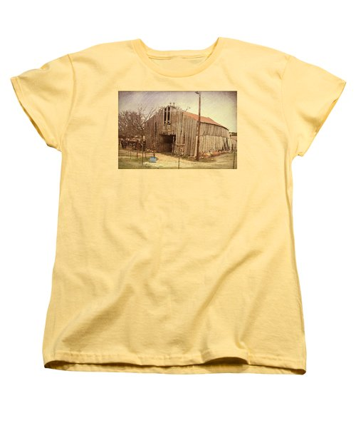 Paul's Barn Women's T-Shirt (Standard Cut) by Susan Crossman Buscho