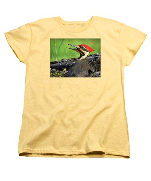 Pileated Women's T-Shirt (Standard Cut) by Douglas Stucky