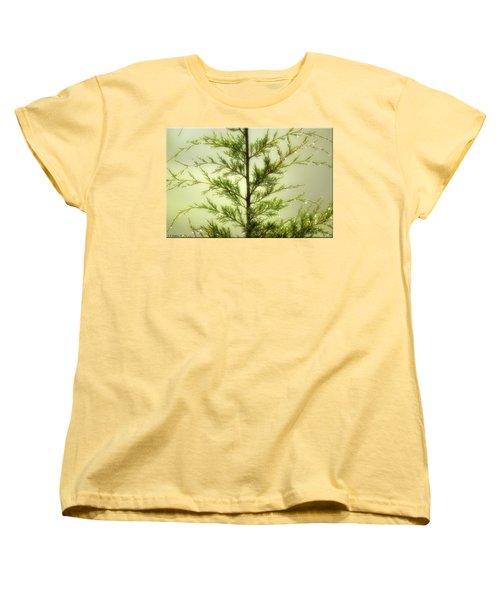 Women's T-Shirt (Standard Cut) featuring the photograph Pine Shower by Brian Wallace