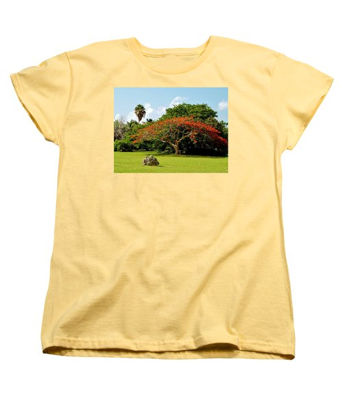 Poinciana Women's T-Shirt (Standard Cut) by Amar Sheow