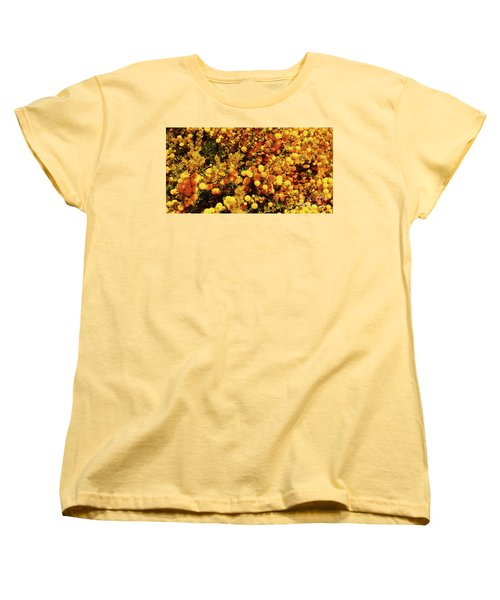 Prickly Moses Women's T-Shirt (Standard Cut) by Cassandra Buckley