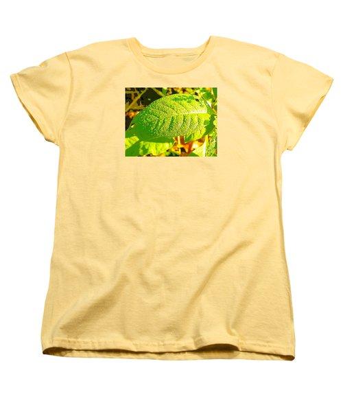 Rain On Leaf Women's T-Shirt (Standard Cut) by Craig Walters